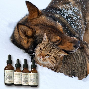 Love Your Pets…the CBD Way